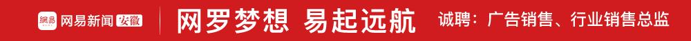 安徽一六三广告有限公司 合肥人才网 新安人才网