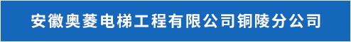 安徽奥菱电梯工程有限公司铜陵分公司  铜陵招聘 新安人才网