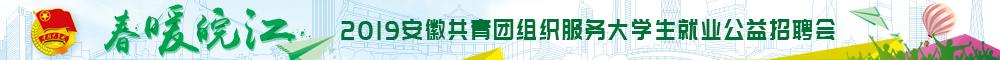 春暖皖江-2019安徽共青团组织服务大学生就业公益招聘会