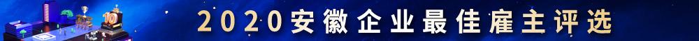 2020安徽企业最佳雇主评选-新安人才网